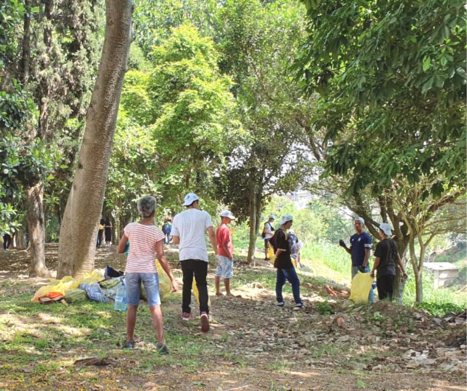 Sob as árvores uma senhora se unta aos jovens na coleta de lixo.
