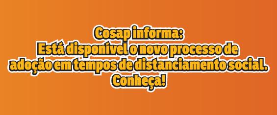 #PraCegoVer: fundo laranja, ao centro o texto diz: COSAP informa:  Está disponível o novo processo de adoção em tempos de distanciamento social. Conheça!