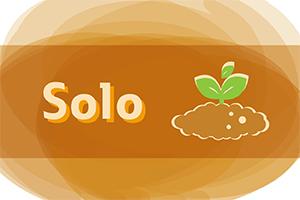 Imagem na cor laranja. Titulo na cor laranja. Ilustração de terra e planta
